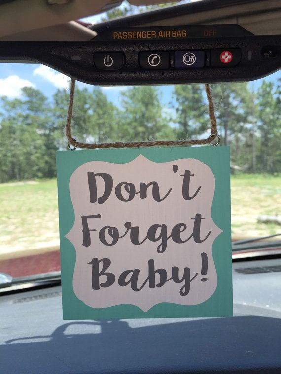 Don T Forget Baby Vehicle Safety Reminder Hand Painted Wooden