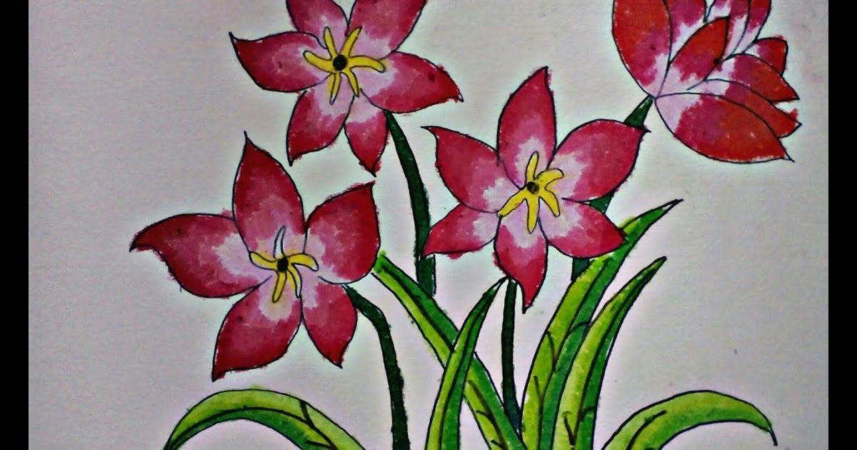 Contoh Gambar Bunga Tulip Guru Ilmu Sosial