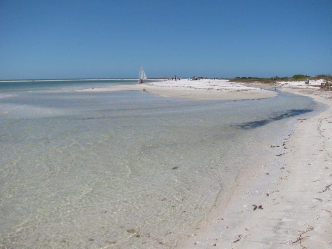 Beautiful shoreline honeymoon island florida honeymoon island