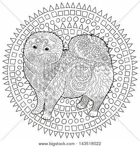 Pomeranian Coloring Pages for Adults | High detail ...
