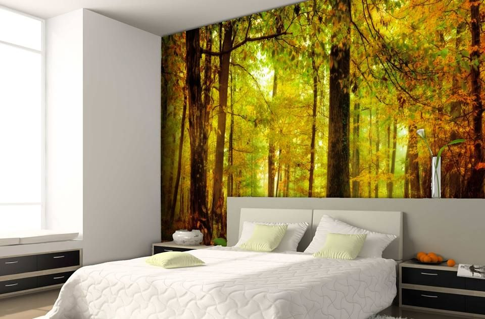 Liven up your business or home interior with #Wallpaper. It is a great way to display graphics indoors with the environment in mind. Application and removal is easy. Will last up to 20 years. Call 1-800-516-7606. #WallpaperPrinting #NYCPrinting