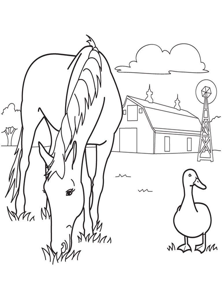Coloring Rocks Farm Animal Coloring Pages Farm Coloring Pages Horse Coloring Pages [ 1024 x 768 Pixel ]