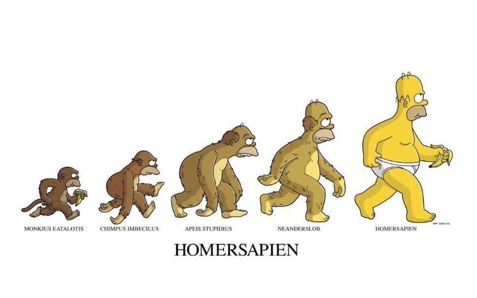 Épinglé par isaac roy sur les simpson | Simpsons, Dessin humoristique, Images drôles dessin animé