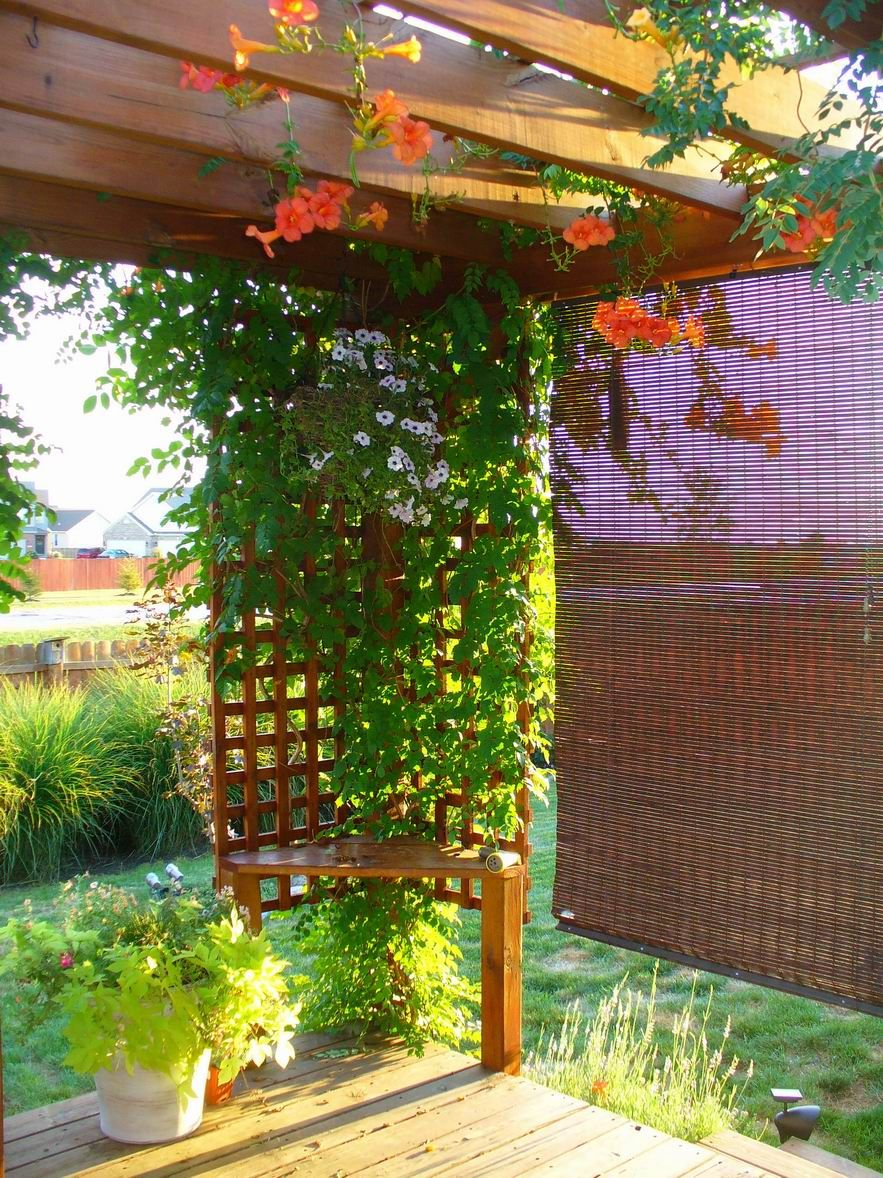 garden ideas - Flower Garden Ideas Illinois