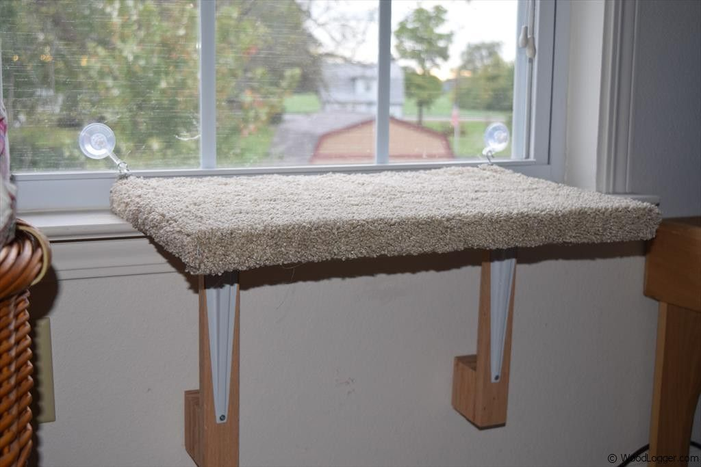 Dog Window Perch Give Huge Comfort For Your Dog To Have Much