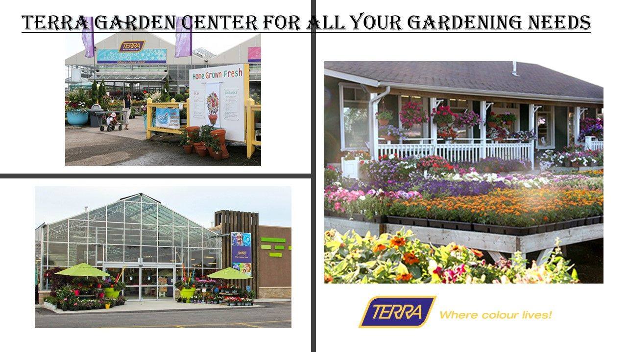Looking For Garden Stores And Centre In Nearby Area In Ontario For