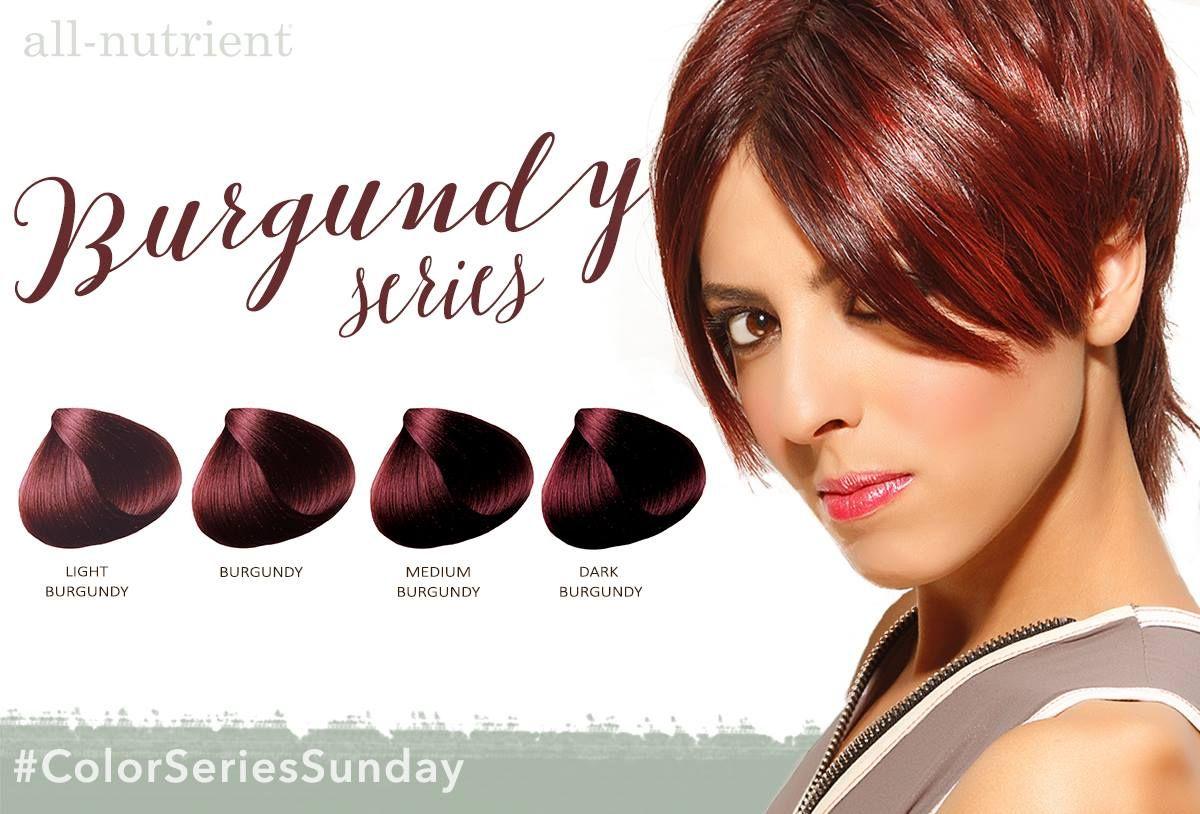 Burgundy Haircolor Allnutrient Hair Color Hair Life Hair