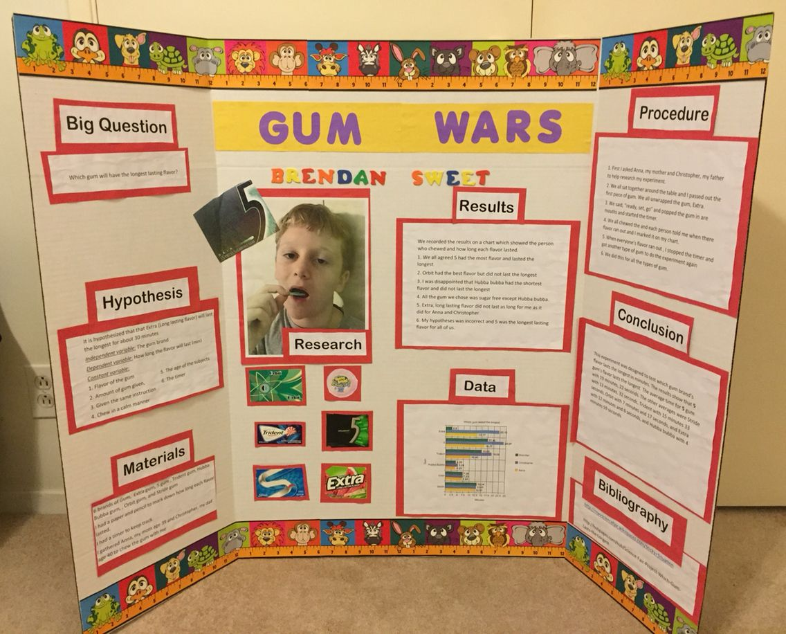 science of gum Simple science fair projects to do at home find this pin and more on learning by m1028garcia fifth grade science fair project which brand of gum blows the biggest bubble.