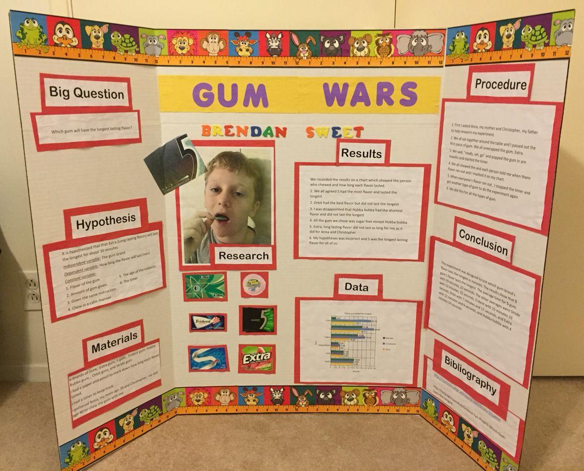 Science fair bulletin board which gum flavor last the longest | Kids ...