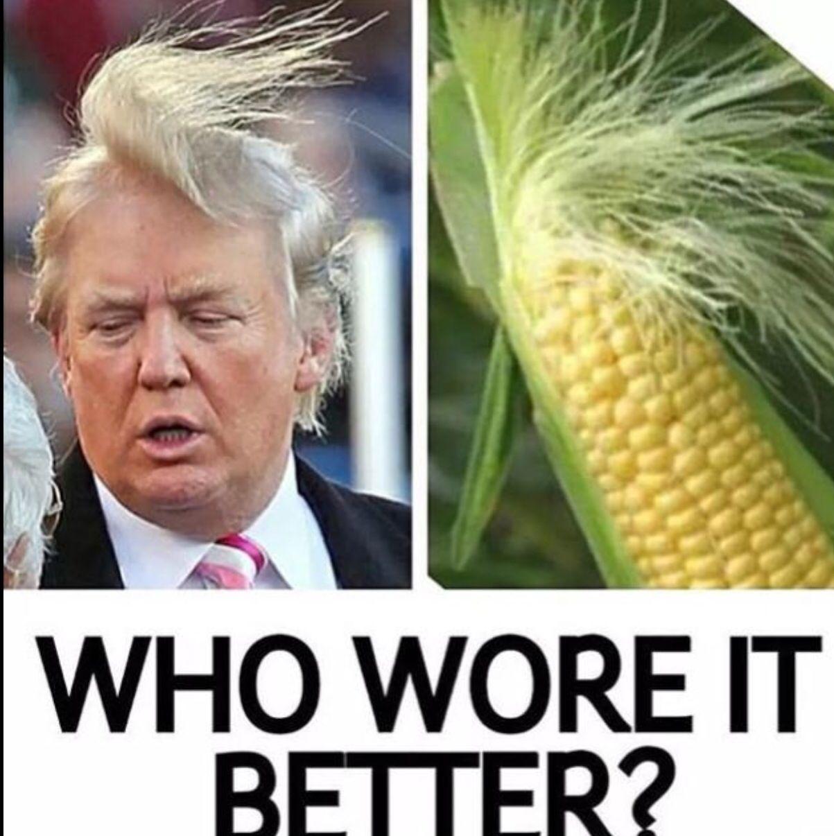 Lol Donald Trump | Funny Pics | Pinterest | Donald trump ...