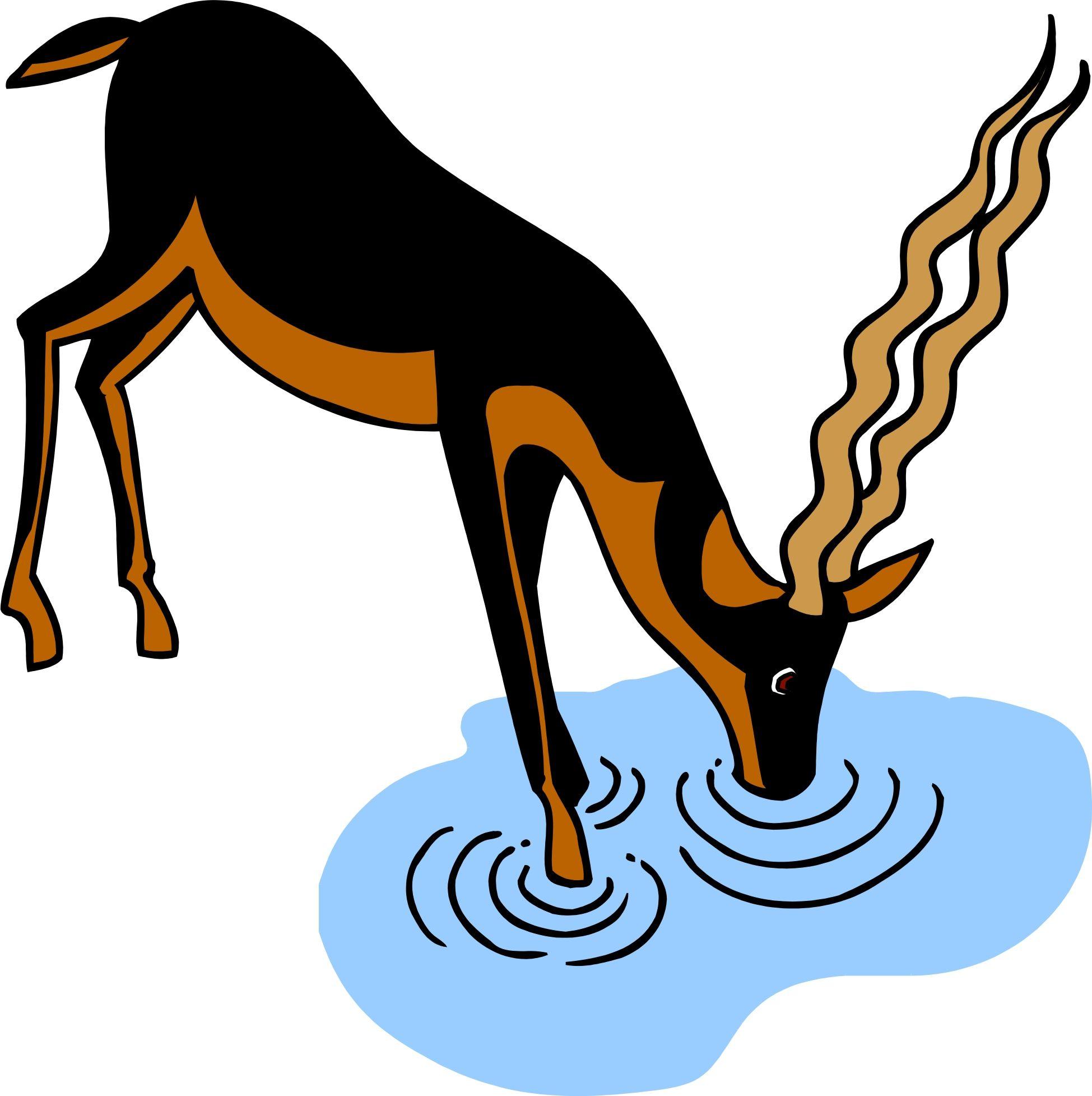 deer drinking water clipart art pinterest drinking water rh pinterest com girl drinking water clipart drinking water clipart free