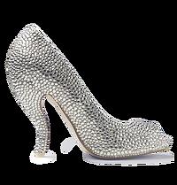 Suri Crystal Shoes