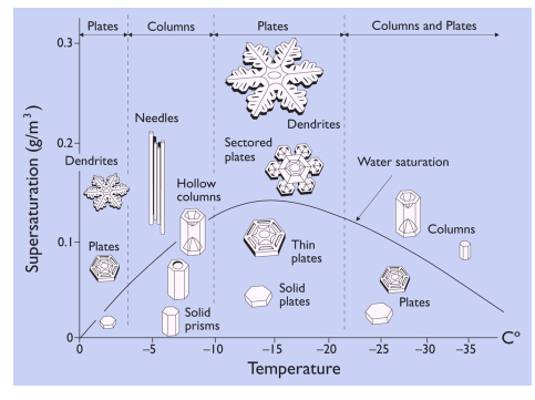 Mathematical Model Computes Snow Flake Shapes For The First Time Snowflakes Science Winter Science Fun Science