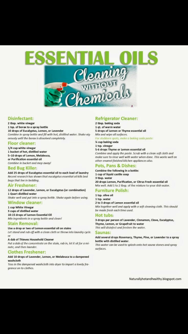 Pin by Rebecca on Oils Essential oils cleaning