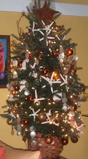 25 Coastal Christmas Holiday Trees Inspired By The Sea Christmas Holidays Christmas Tree Decorations Coastal Christmas Tree