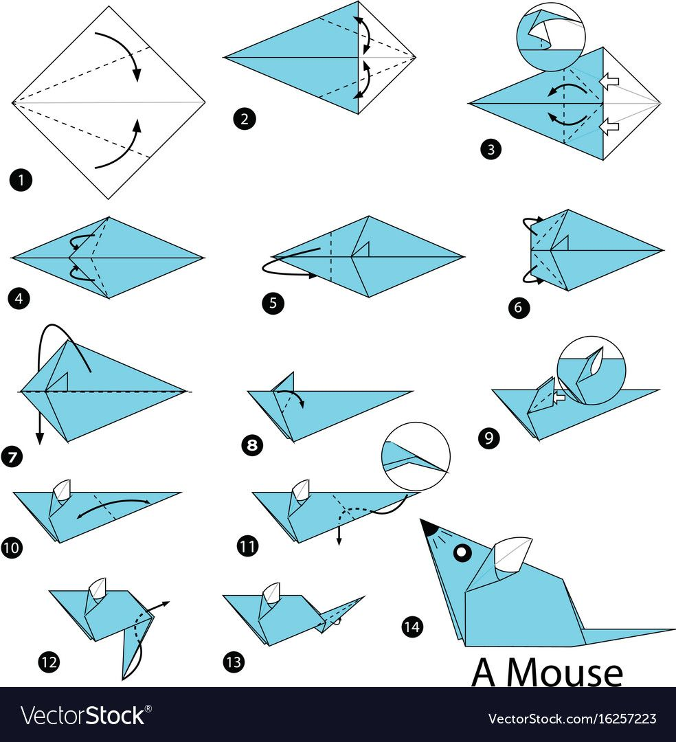 Mouse Rat Origami Literacy Tie Ins Pinterest Animals Parrotdiagram By Barth Dunkan Ecorigami