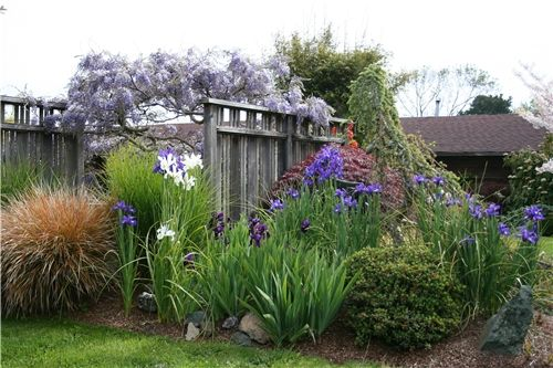 Landscaping Ideas To Hide Pool Equipment here is a link that might be useful Fence Screens Gates And Fencing Genevieve Schmidt Landscape Design And Fine Maintenance Arcata
