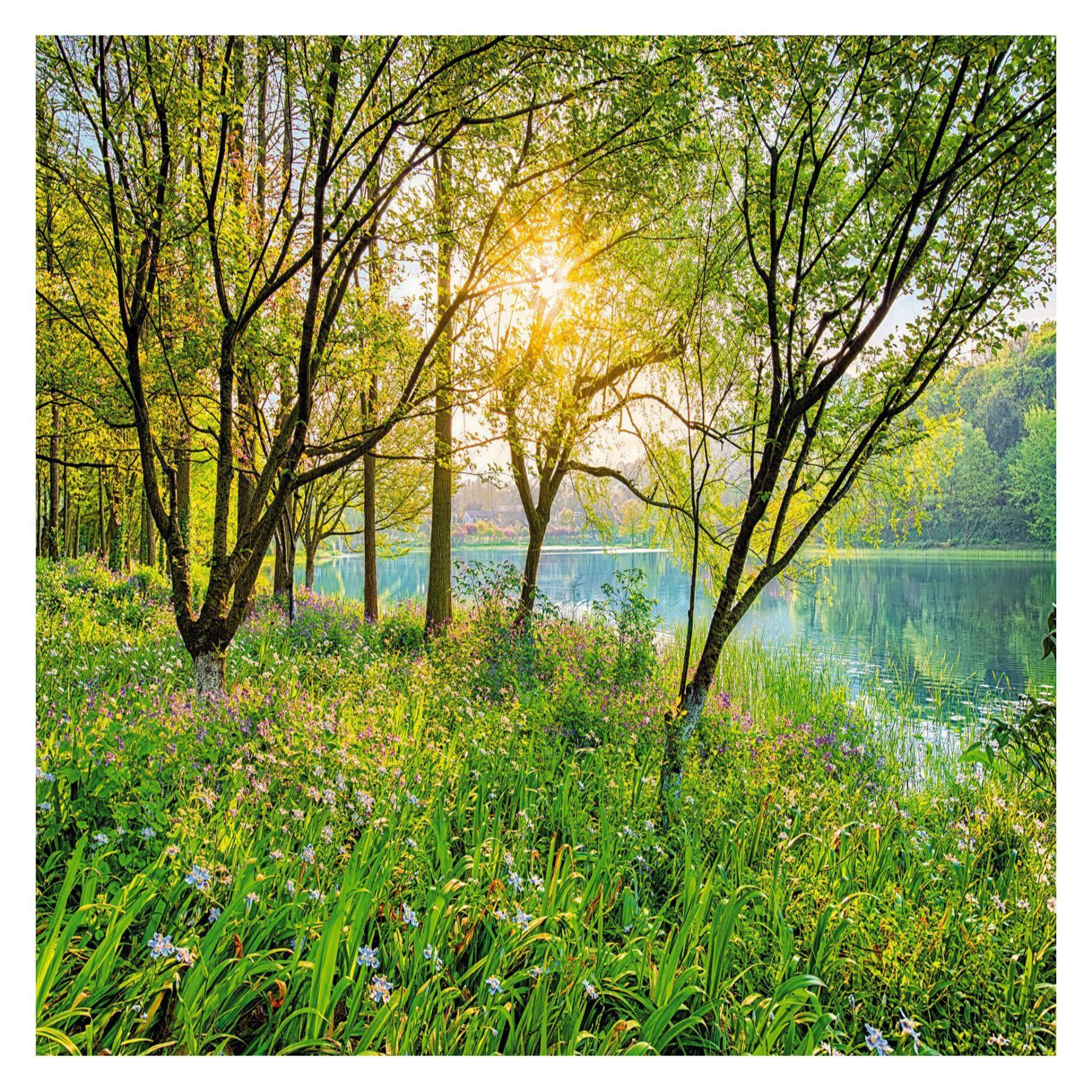 Komar Spring Lake Wall Mural - 8-524 | Wall murals and Products