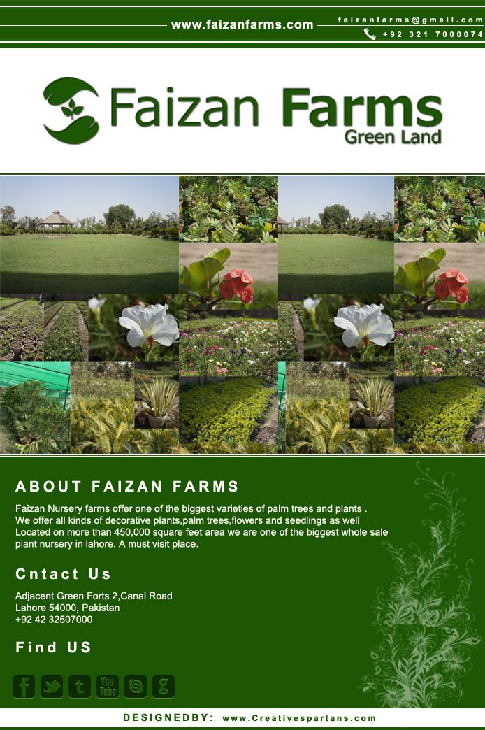 Faizan Nursery Farms Offer One Of The Gest Varieties Palm Trees And Plants We All Kinds Decorative Flowers Seedlings
