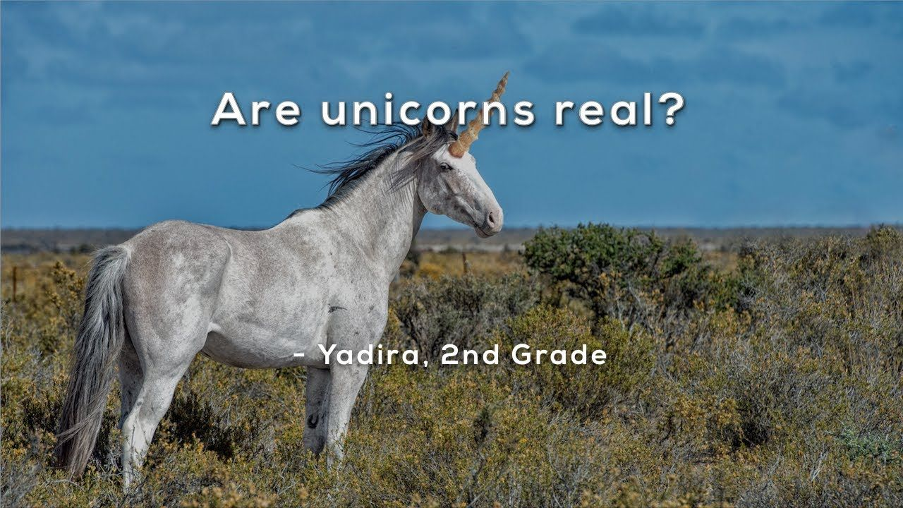 Are unicorns real youtube in 2020 mystery science