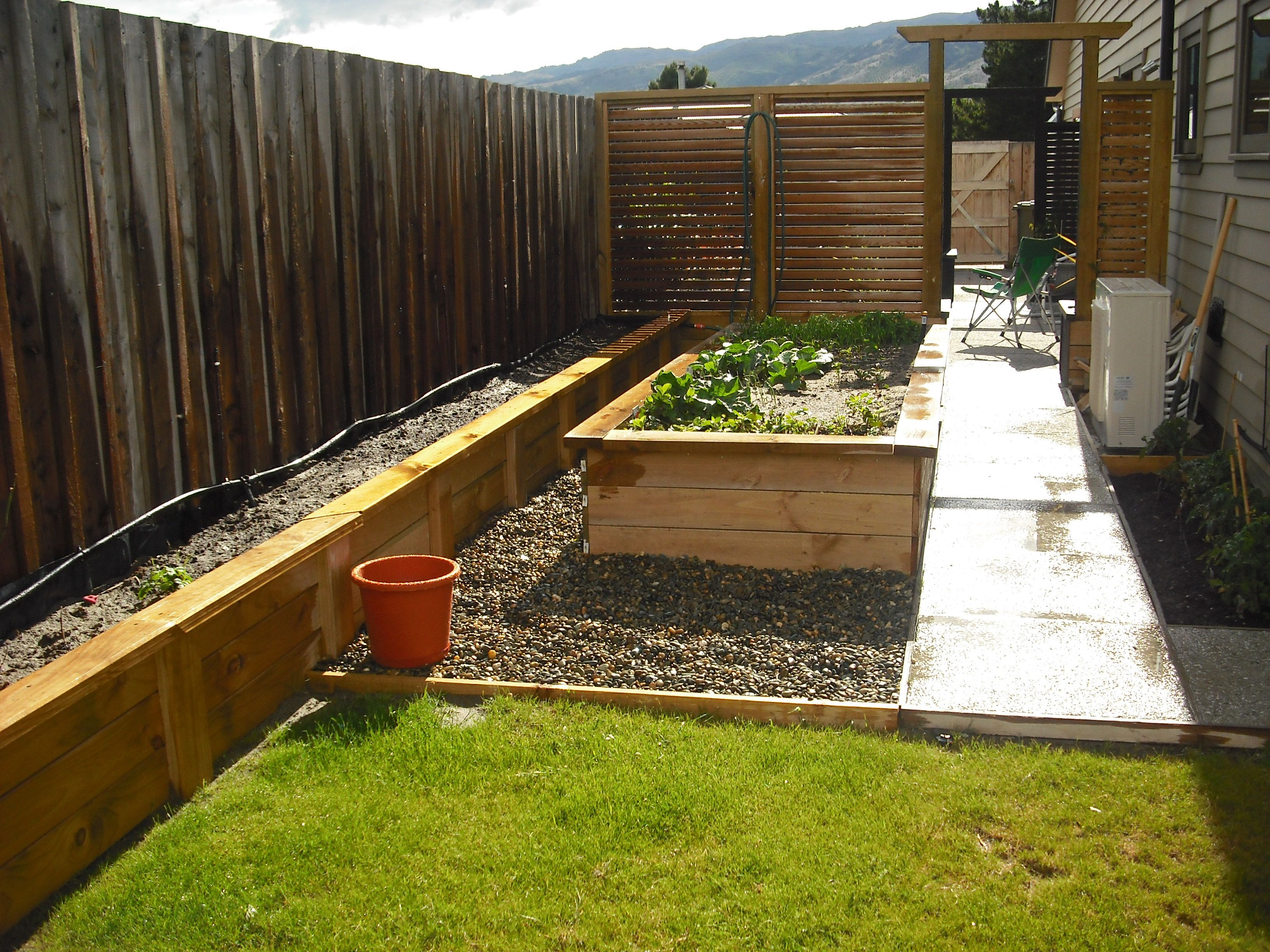 Potatoes Along The Fence, Raised Vegie Bed In The Middle, Tomatoes Against  The Wall