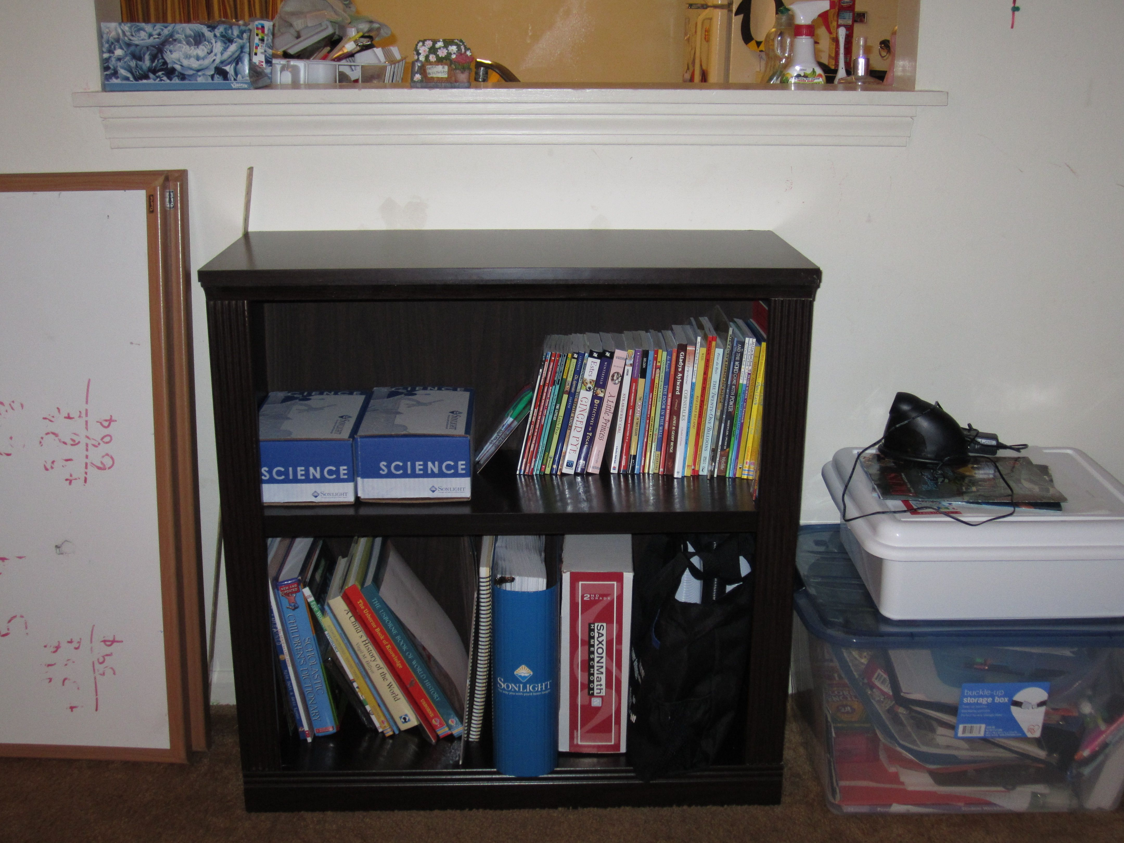 just bookcases big laminated white shade fashionable area lamp room for size desk wooden frame solid the of black anymore nerd hardowrd wall rugs flower bookcase picture full purple staples medium vase varnished amaranth floor not decorate