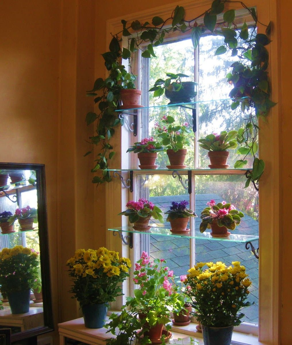 Kitchen Window Plant Shelf: Create A Window Garden!