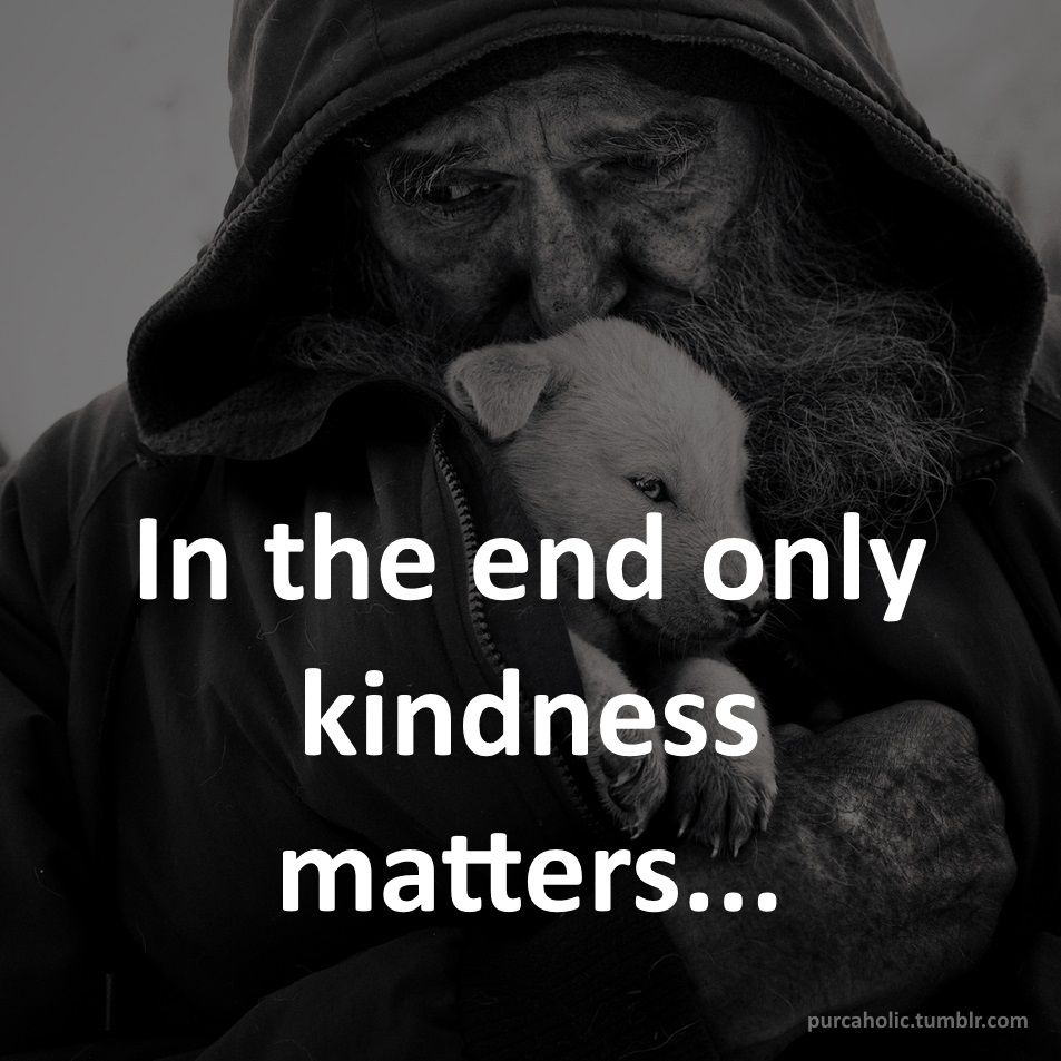 In the end only kindness matters...  #humanity #animals #puppy #quote #quotes #cite #citation #citations #wisequotes #word #words #wisewords #saying #proverb #book #books #reading #kindle #wisdom #quoteoftheday #maxim #expression #phrase #slogan #instaquote #augsburg #munich #muc #münchen #stuttgart