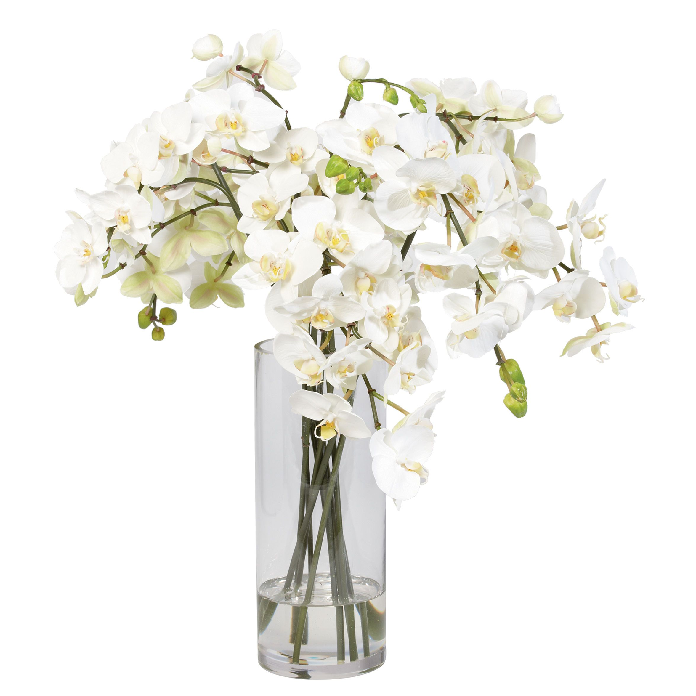 silk flower arrangements white orchids in glass vase. Black Bedroom Furniture Sets. Home Design Ideas