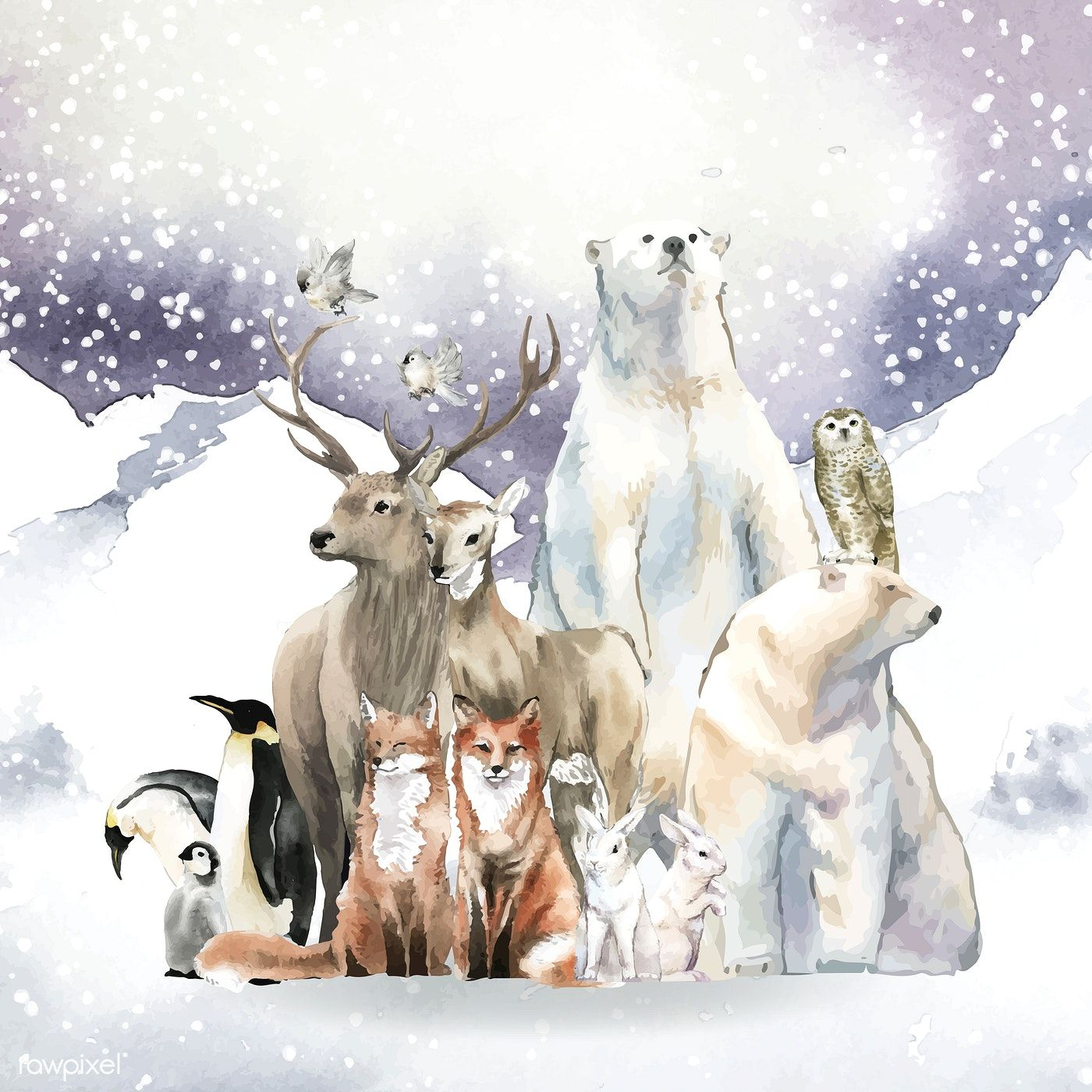 Group Of Wild Animals In The Snow Drawn In Watercolor Free Image