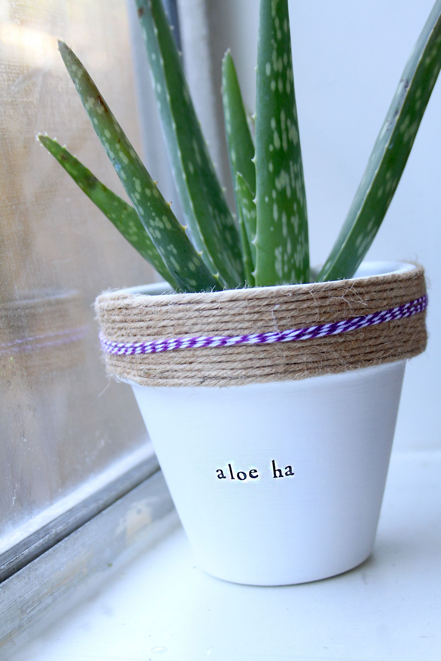 Shop More Potted Plants The Sill: Plant Themed Puns! Check The Whole Store For More! Www