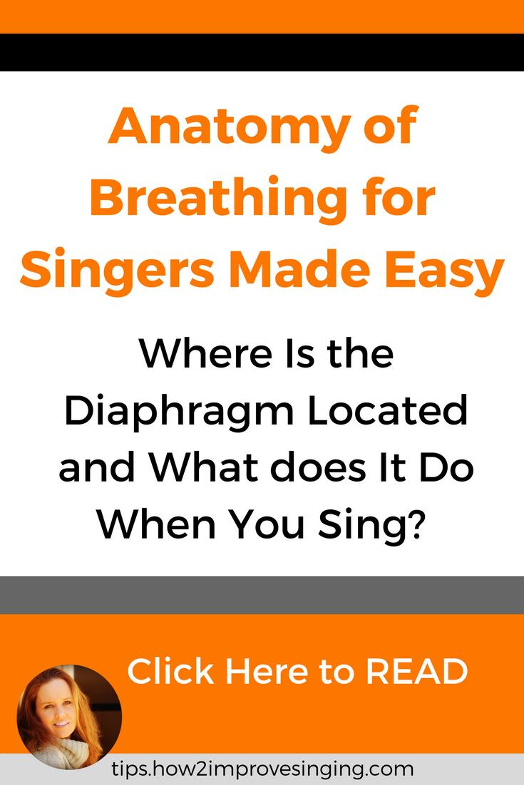 Anatomy of Breathing for Singers Made Easy | Pinterest | Breathe ...