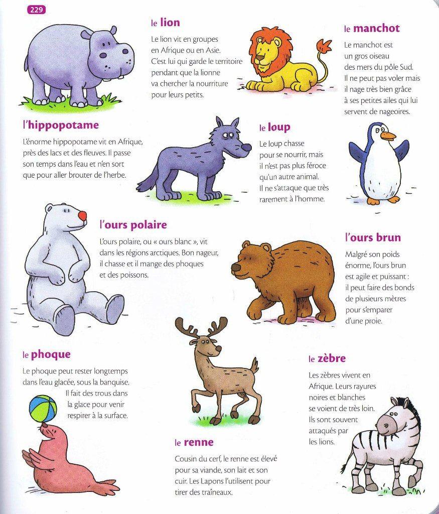 Lexique des animaux sauvages 2 source mon premier for Habitat du monde