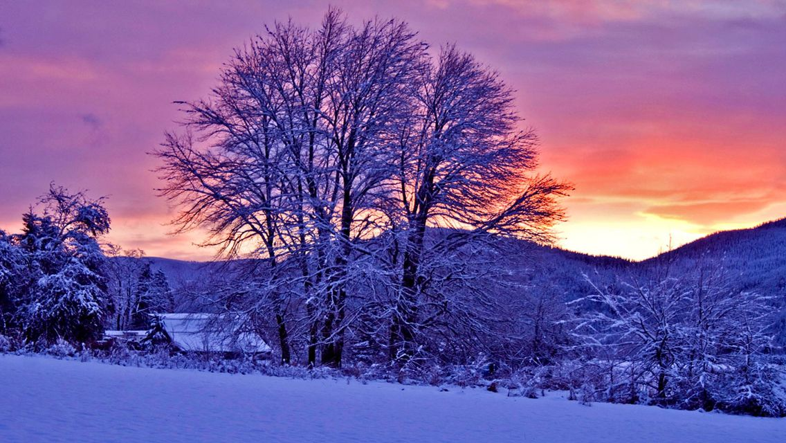Free Download Winter Sunset Hd Wallpapers For Iphone 5 Free Hd