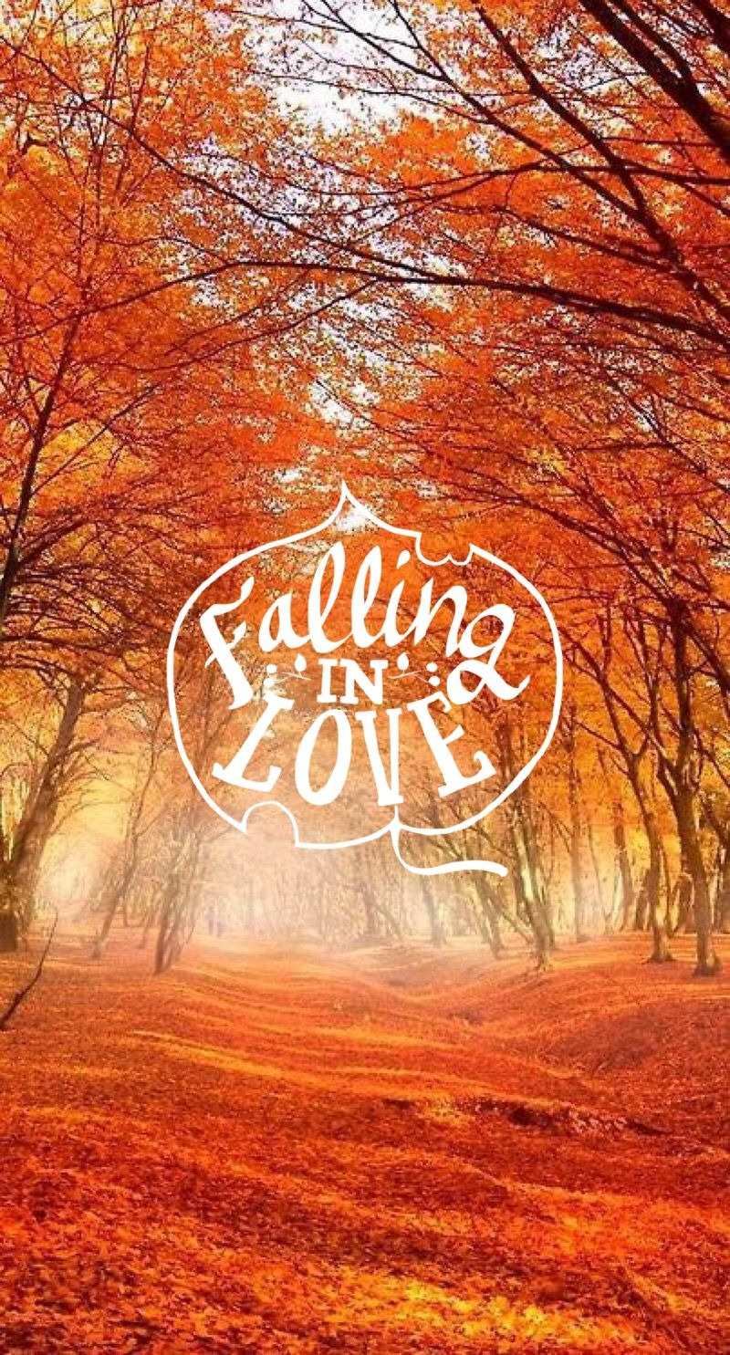 Fall ♚ #iphone #quote #halloween #wallpaper  Fall wallpaper