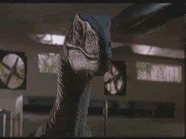 raptor sex