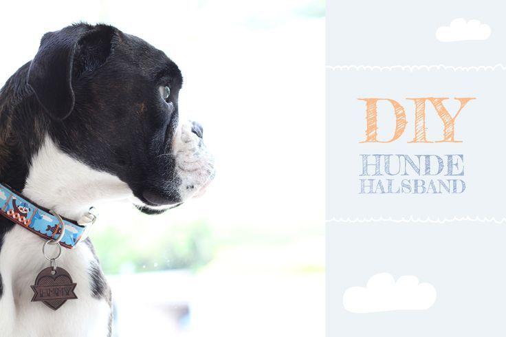 Hundehalsband selber nähen - schnell & einfach mit dieser Schritt-für-Schritt-Anleitung
