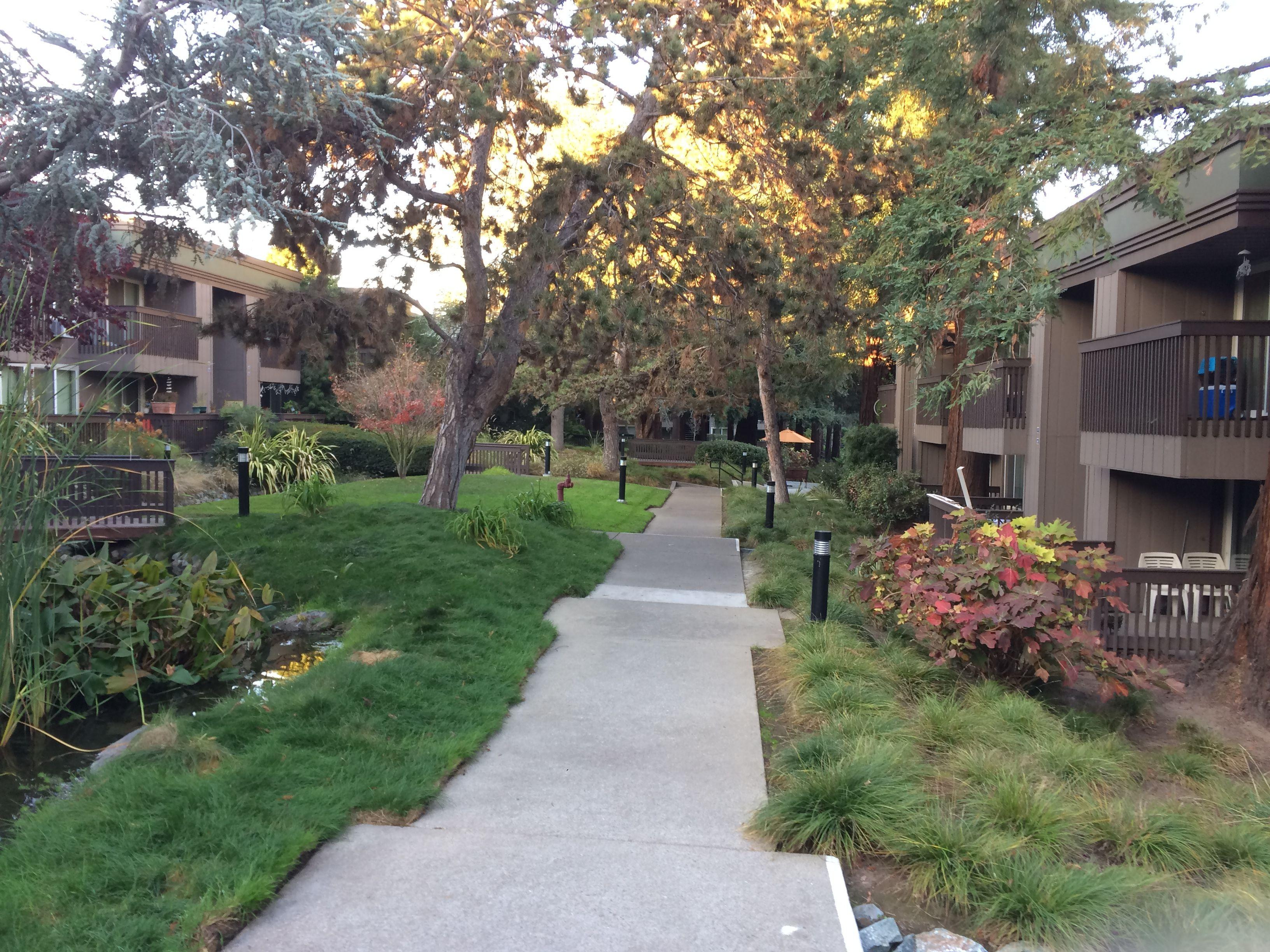 Pin By Richard Mcpherson On Hidden Lake Apartments Santa Clara Santa Clara Lake Sidewalk