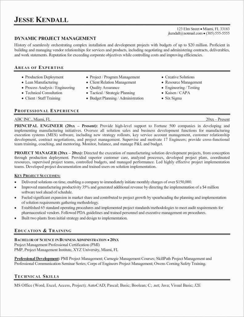 Technical Project Manager Resume Luxury It Project Manager