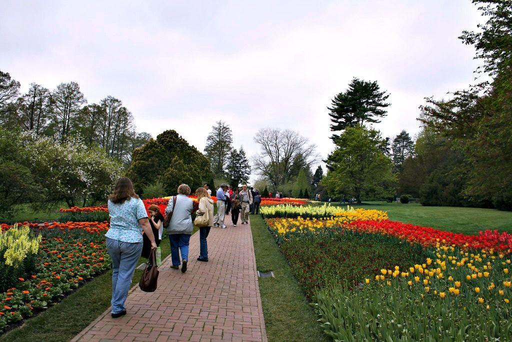 A Virtual Photo Tour Of Longwood Botanical Gardens + My