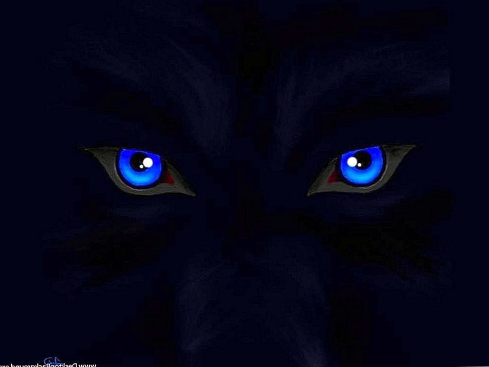 Blue Eyed Wolf Wallpapers Android Blue Eyed Wolf Wallpapers Android Wolf Wallpaper Wolf With Blue Eyes Wolf Pictures