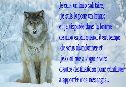 Loup Solitaire Recherche Google Loup Solitaire Loup Et