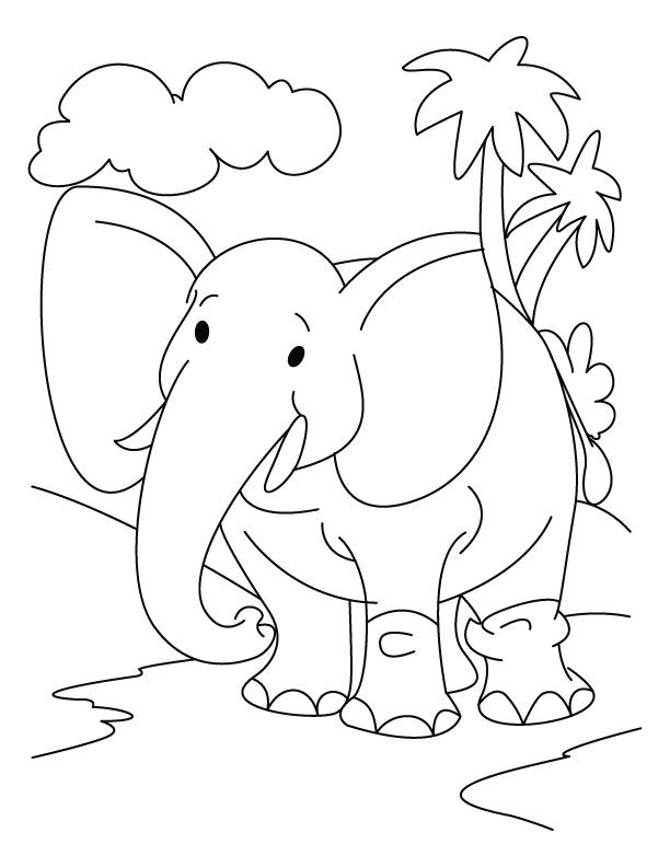 Elephant in the jungle coloring page download free elephant in