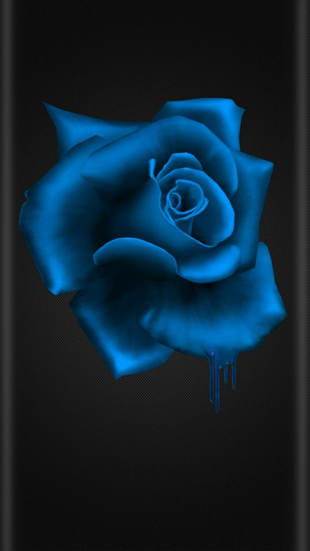 Black And Blue Flower Blue Flower Wallpaper Blue Roses Wallpaper Black And Blue Wallpaper