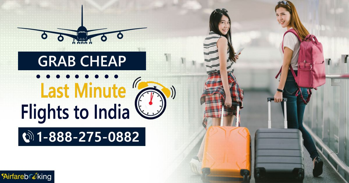 Explore India's beauty with Last Minute Flight Deals!  Get amazing discounts on flight booking with #Airfarebooking.   For more information call us at- 1-888-275-0882 (Toll-Free).  #lastminuteflightdeals #cheaplastminuteflights #bookflightsonline #TraveltoIndia #TripstoIndia #ExploreIndia #Beautiful #IndianDestinations #Travel #visitindia