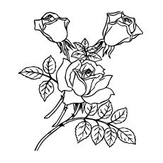 top 25 free printable beautiful rose coloring pages for kids in 2020  rose coloring pages