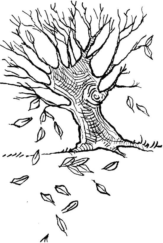 fall tree leaves coloring page