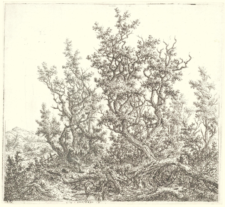 Claes van Beresteyn | Landschap met een groep eiken en een rustende man, Claes van Beresteyn, 1653 - 1657 |