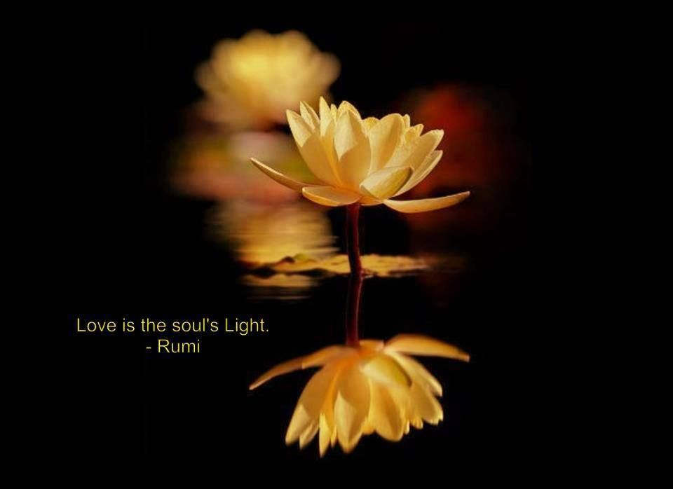 💐 Light on life quotes