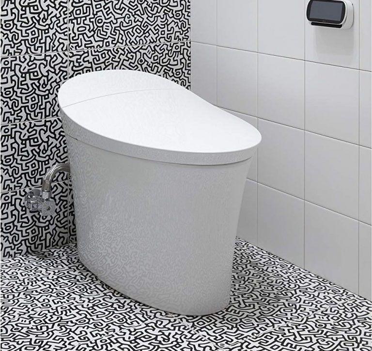 5 Best Bidet Toilet Combos (2020 Reviews & Buyer's Guide